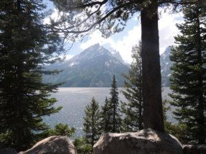 grand-teton-national-park10